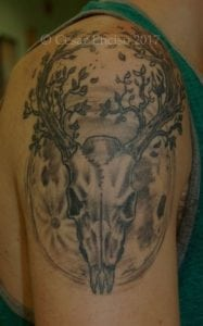 deer skull and moon low res with copyright